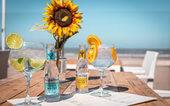 Diner Cadeau Den Haag Beachclub WOW